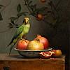 birds in your interior