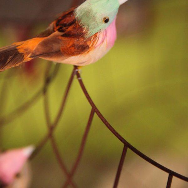 Fågelbur hängande lampa matbord kitchen